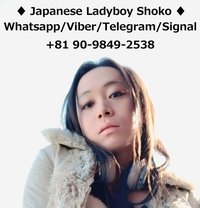 Japanese Ladyboy Shoko - Transsexual escort in Tokyo