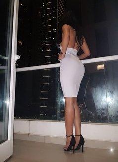 Sofia New Sexy Curvy - escort in Dubai Photo 4 of 10