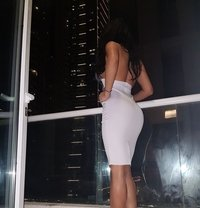 Sofia New Sexy Curvy - escort in Dubai