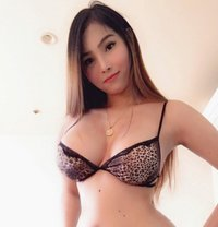 Stunning Top Luxury Independent Escort - escort in Melbourne