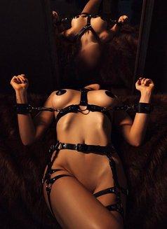 Submissive Alexis - escort in Prague (Praha) Photo 1 of 3