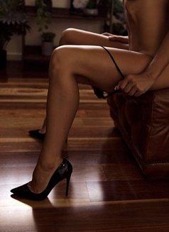 Submissive Alexis - escort in Prague (Praha) Photo 2 of 3