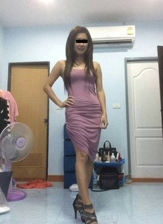 Sweet A-Level Migael - escort in Pattaya Photo 3 of 11