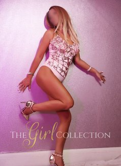 The Girl Collection - escort agency in Manchester Photo 1 of 4