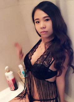 Thai Girl Rola 20 year old - escort in Dubai Photo 1 of 6