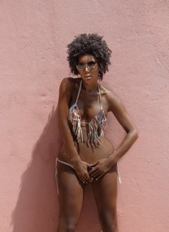 Trans Wanda Sue Exotic NO LIMIT SEX - Transsexual escort in Beirut Photo 11 of 26