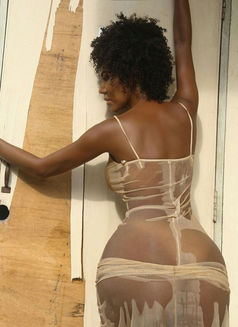 Trans Wanda Sue Exotic NO LIMIT SEX - Transsexual escort in Beirut Photo 6 of 26