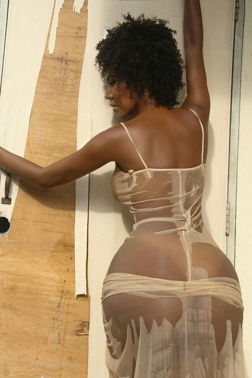 no escort pronstar escort