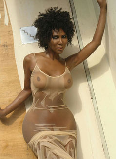 Trans Wanda Sue Exotic NO LIMIT SEX - Transsexual escort in Beirut Photo 7 of 26
