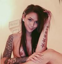 CAM SHOW CumShow Paypal/ Bank - Transsexual escort in Kuwait