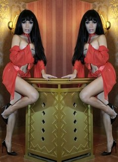 So Chic, So Hot, So Sexy - TS AMBER - Transsexual escort in Manila Photo 17 of 30