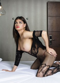 Ts angela Top/bottom bigcock - Transsexual escort in Makati City Photo 8 of 29