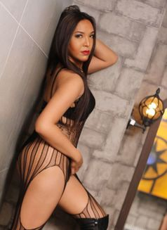 YOUR HOTTEST PLAYMATE TRANSCANDY - Transsexual escort in Makati City Photo 4 of 17