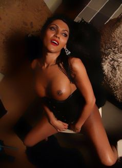 Ts Danisha - Transsexual escort in Amsterdam Photo 1 of 20