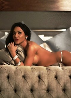 Ts Danisha - Transsexual escort in Amsterdam Photo 14 of 20