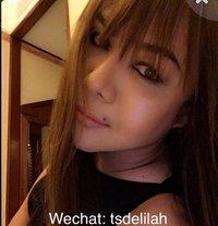 Ts Delilah - Transsexual escort in Amsterdam