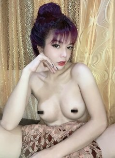 TS.HANA (camshow/outcall) - Transsexual escort in Manila Photo 5 of 8