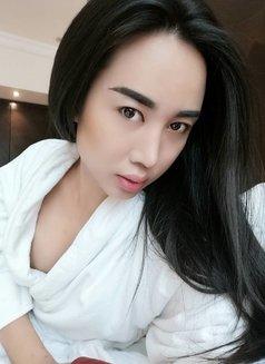 Ts chalita sexy ladyboy, Thai Transsexual escort in Cardiff
