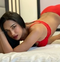 TS-May ONLY SEX CAM NOW - Transsexual escort in Phuket