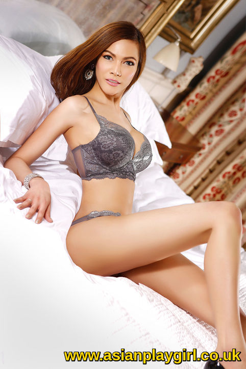 escort massage trans escort 6
