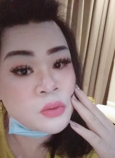 Ts Noola chubby ‍Thai - Transsexual escort in Al Manama Photo 21 of 24