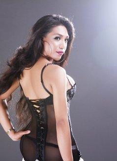 Ts Rafaella just arrived - Transsexual escort in Manila Photo 8 of 26