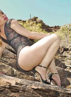 TS SHiRLLey RiCCeLLy - Transsexual escort in Glasgow Photo 10 of 12