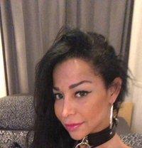 Ts Suzanapires - Transsexual escort in Amsterdam