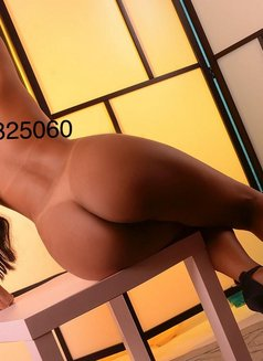 Vanessa Brazilian Girl Incall/ Outcall - escort in Lisbon Photo 2 of 6
