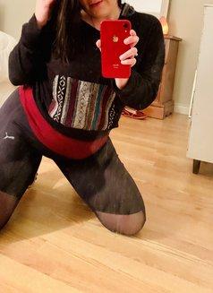 Veronica Knoxx - escort in Halifax Photo 23 of 25
