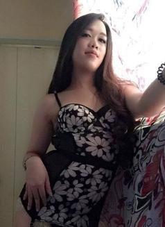 Versatile Ladyboy - Transsexual escort in Manila Photo 4 of 7