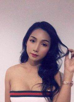 Vip Pornstar Shemale - Transsexual escort in Dubai Photo 1 of 13