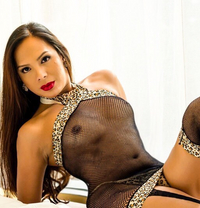 Well Hung Bella Leaving soon - Transsexual escort in Taipei