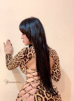 Yasmin Shemale Indonesia - Transsexual escort agency in Jakarta Photo 4 of 14