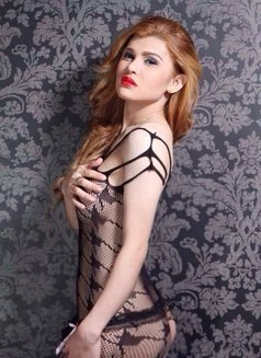 Your Top and BoTtom PrincesS Megan?? - Transsexual escort in Seoul Photo 27 of 30